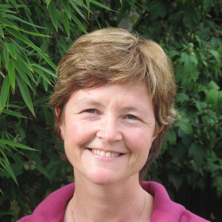 dr Pauline Detruit